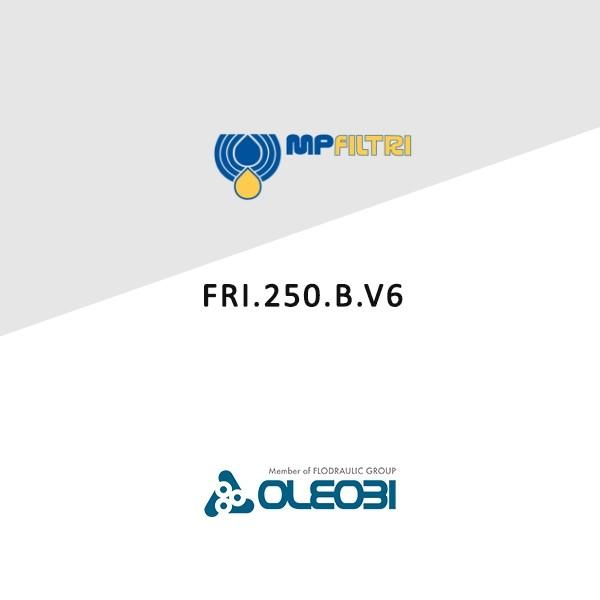 FRI.250.B.V6_mpfiltri_oleobi