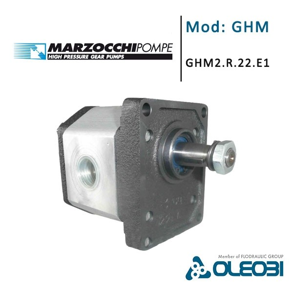 GHM2.R.22.E1_marzocchi_oleobi