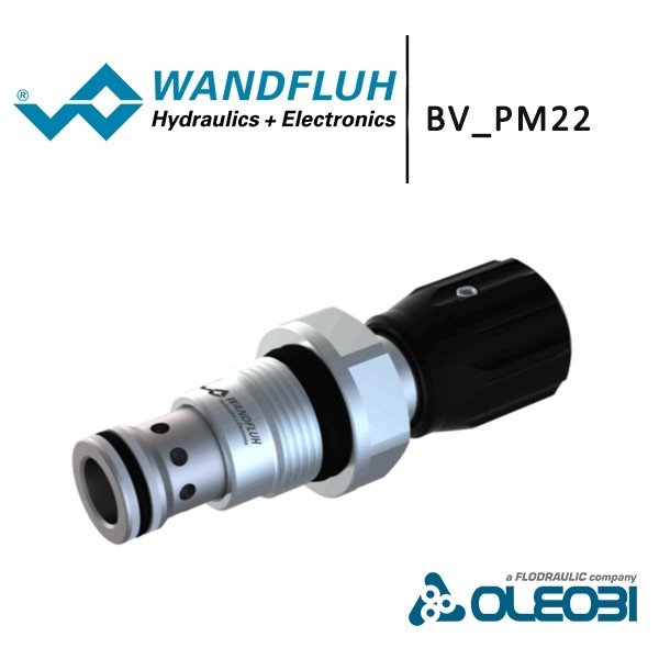 BV_PM22_wandfluh_oleobi